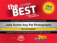 best-of-western-washington-pet-photographer-julie-austin-2015.png