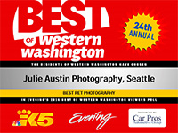best-of-western-washington-pet-photographer-julie-austin-2016.jpg