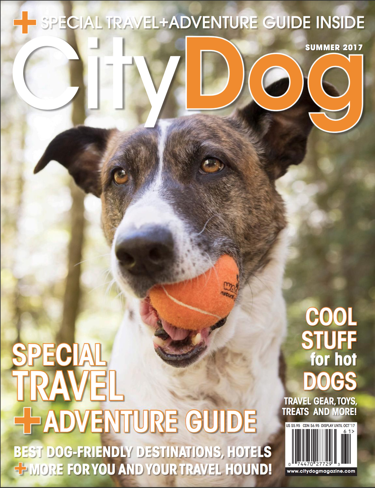 CityDog Summer Cover.jpg