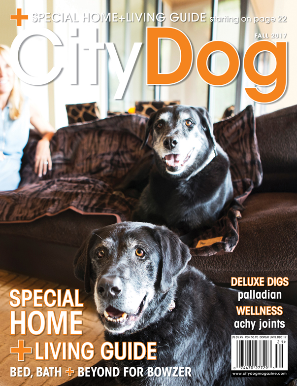 CityDog Magazine Fall 2017 Cover large for web.jpg