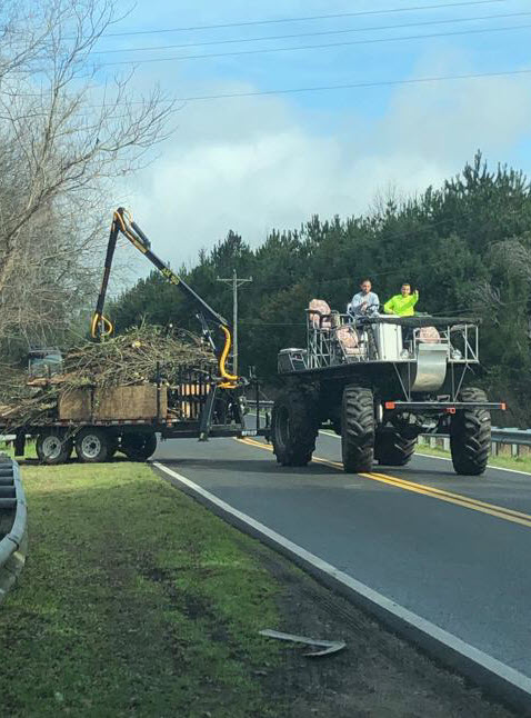 Swamp Buggy -