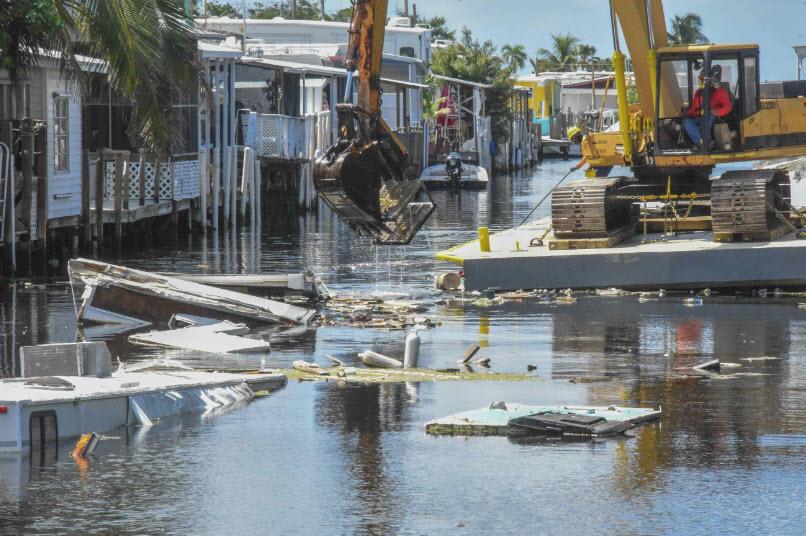 Hurricane Clean Up 3.jpg