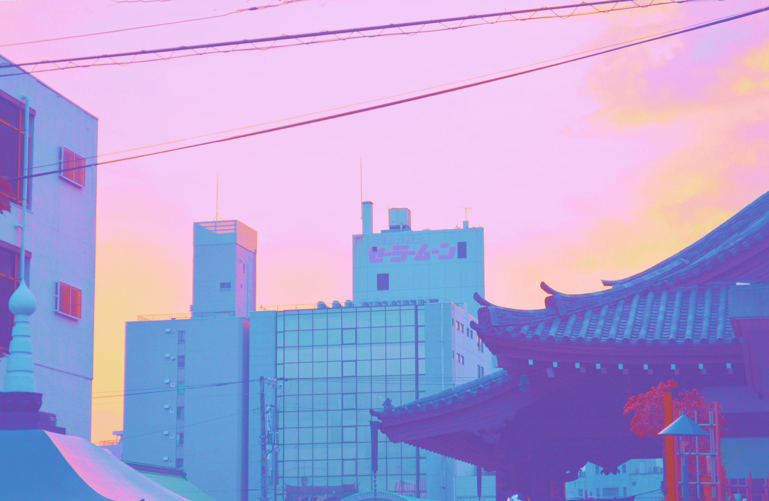 DSC_0979 (3).jpg