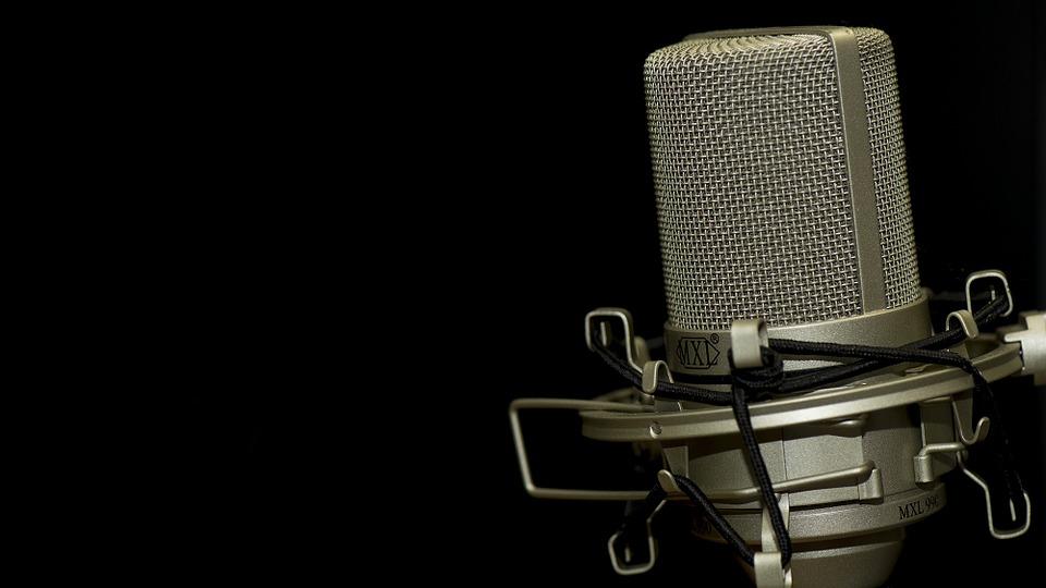 hand-music-seat-leg-red-microphone-921899-pxhere.com.jpg