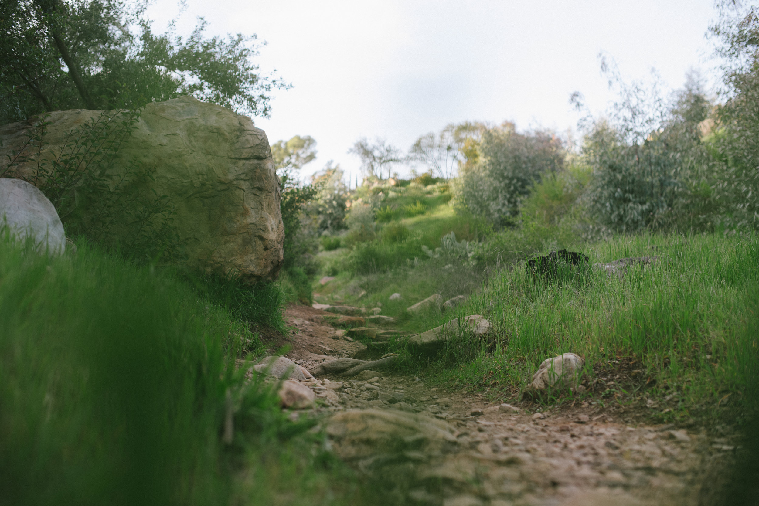 TrailsCasaBarranca-26.jpg