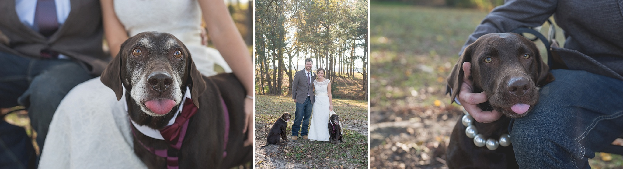 May-Lew-Farm-Farmville-NC-Wedding-Photographer-081.jpg