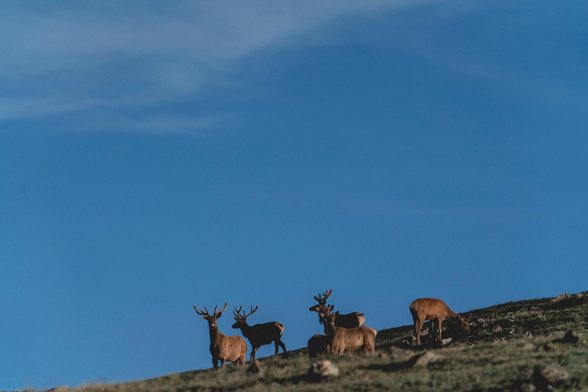 Colorado - 29.jpg