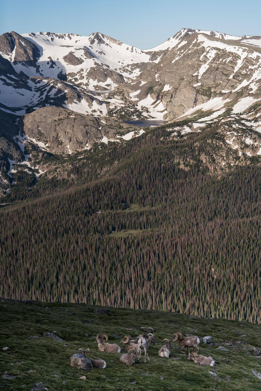 Colorado - 33.jpg