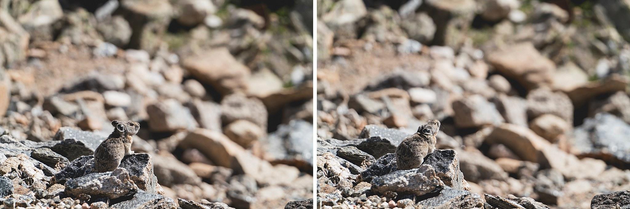 Colorado - 26.jpg