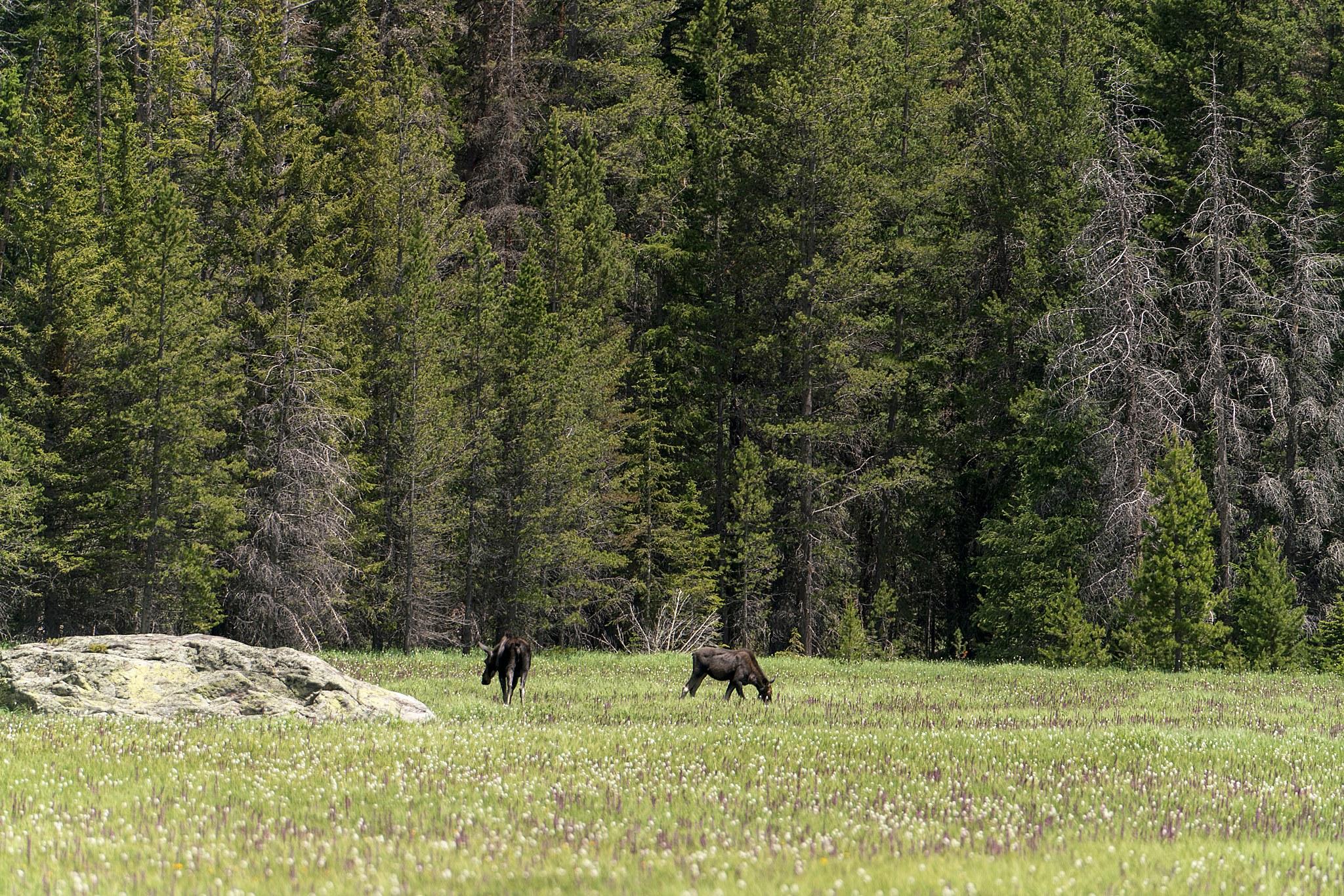 Colorado - 36.jpg