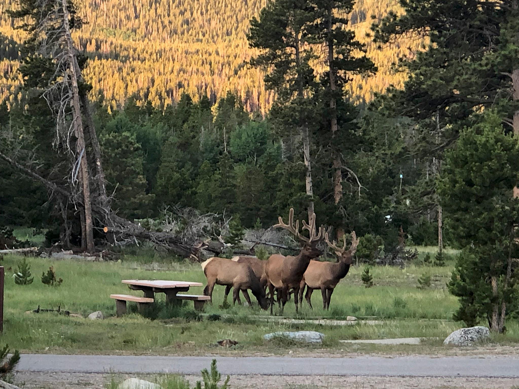 Colorado - 42.jpg