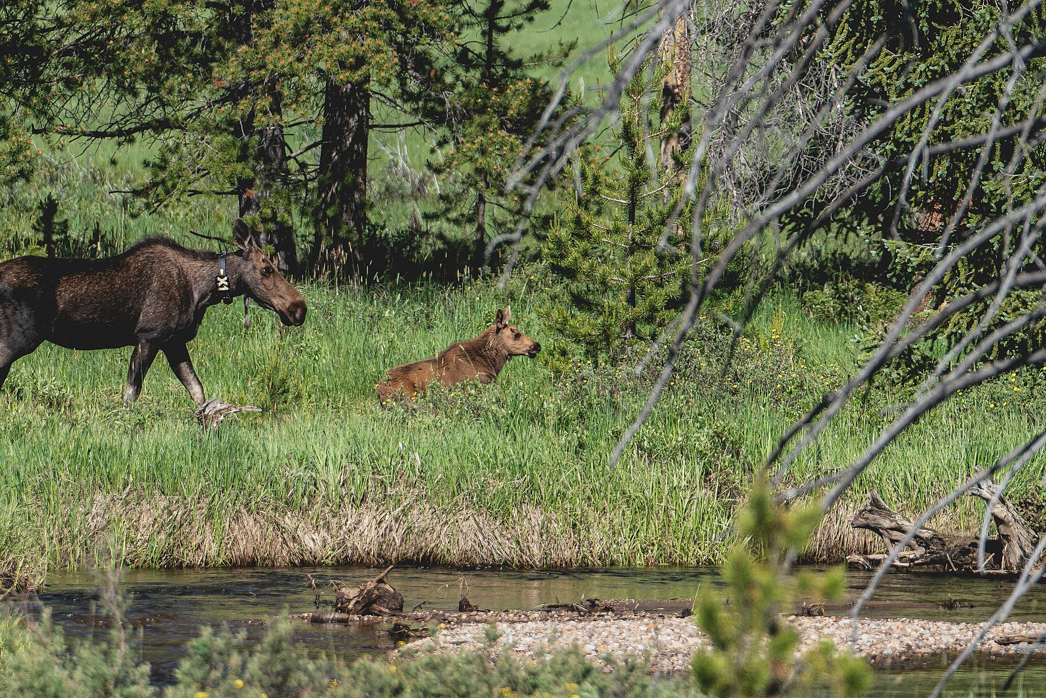 Colorado - 56.jpg