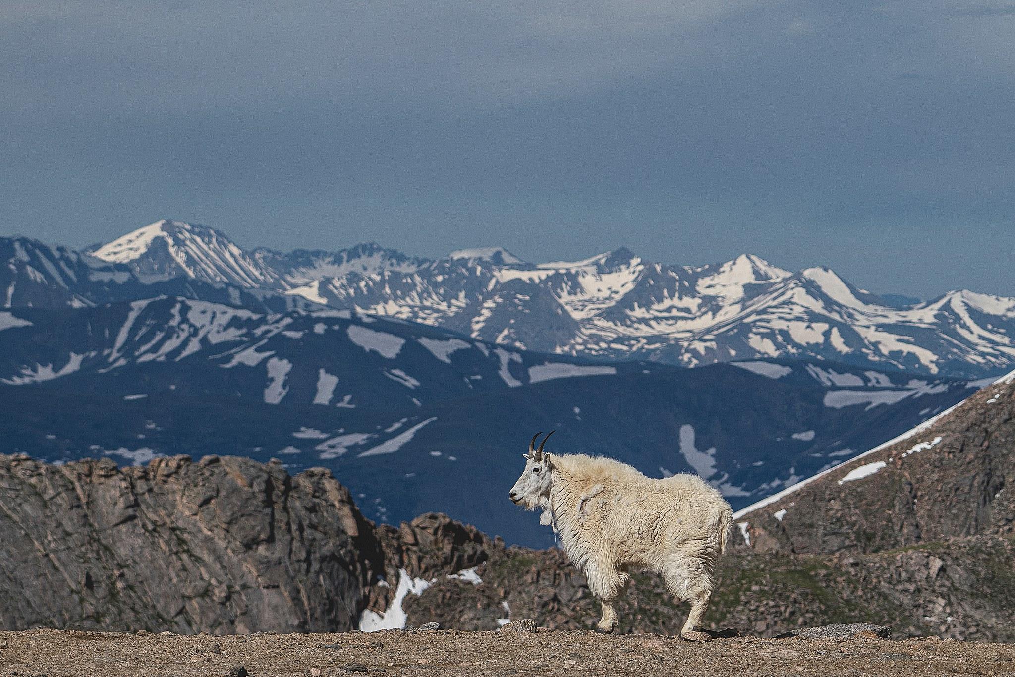 Colorado - 58.jpg