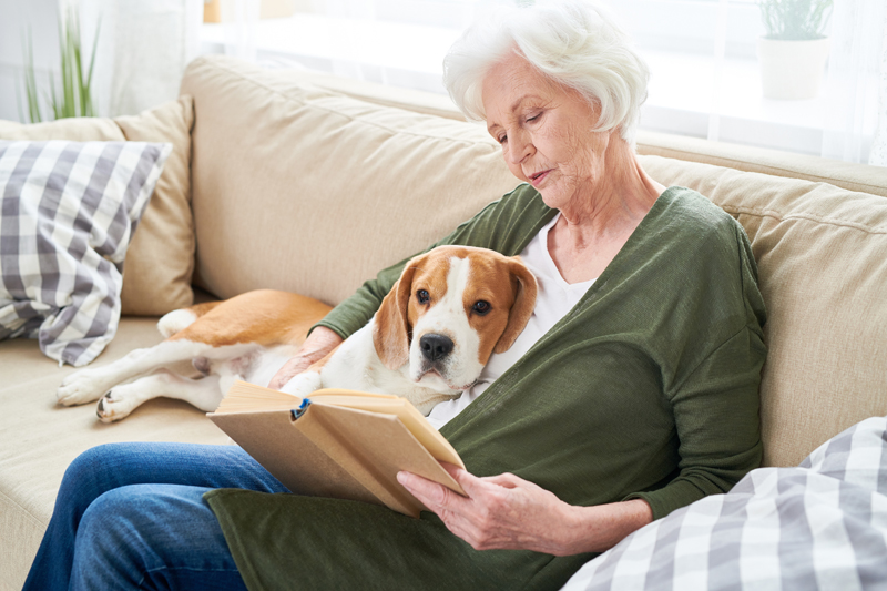 PRAIRIE ROSE HOME SERVICES - Prairie Rose Home Service helps keep seniors in their homes by providing services that many of us take for granted, such as light housekeeping, laundry, bathing and even meal preparation. Our homemakers help with those tasks that have become too difficult for our clients to accomplish on their own. We help seniors to remain independent and in their homes longer.