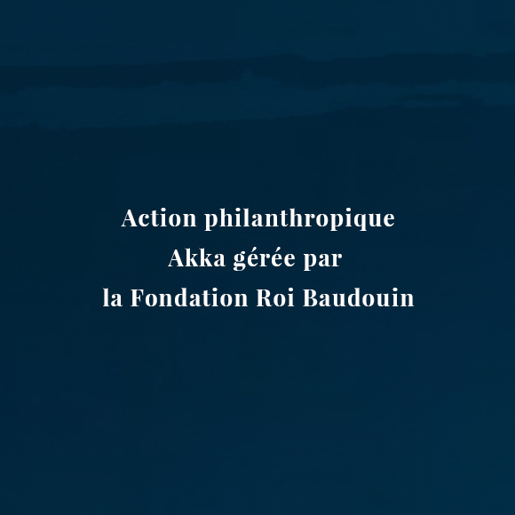 KING BAUDOUIN FOUNDATION - Website