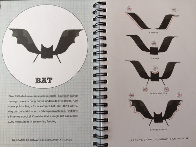 Learn_To_Draw_Calligraphy_Animals_Bat_Instructions.jpg