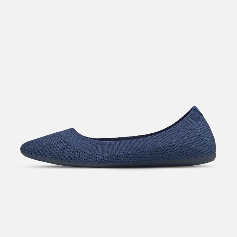Allbirds_Flats.jpg