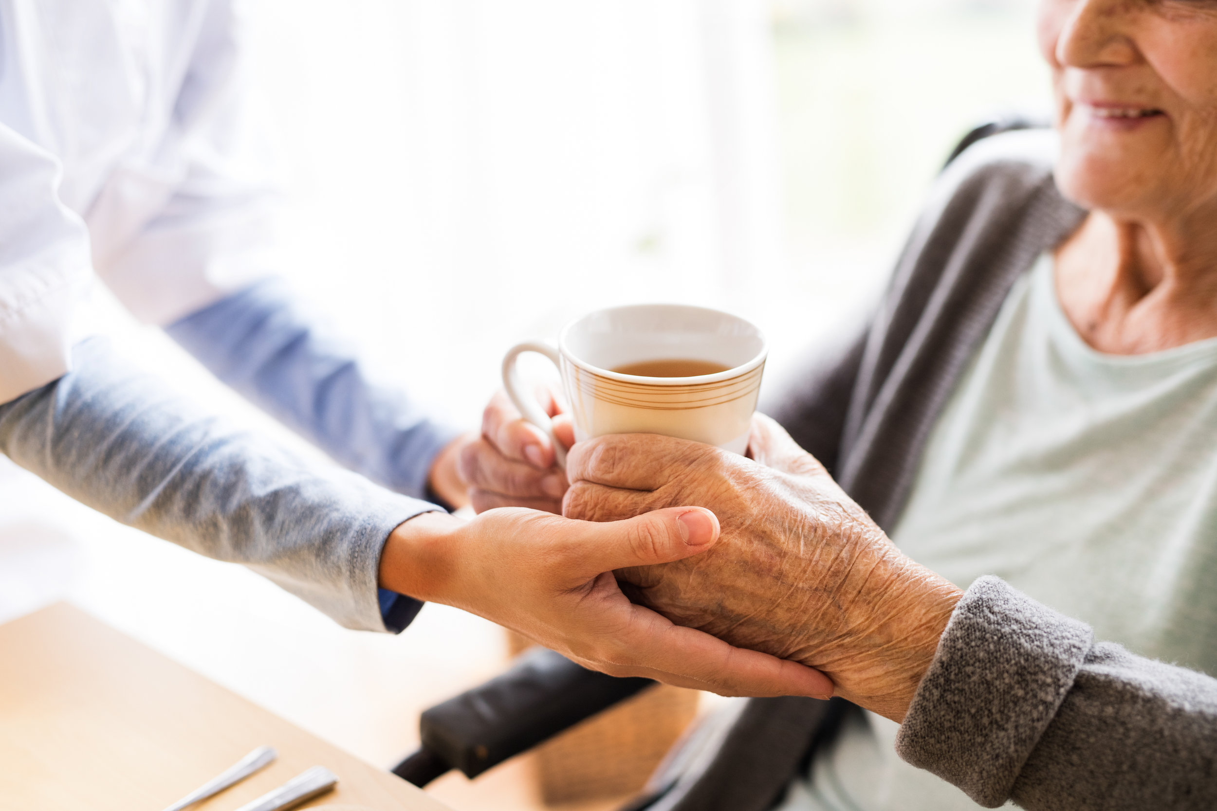 CARE OF THE ELDERLY -