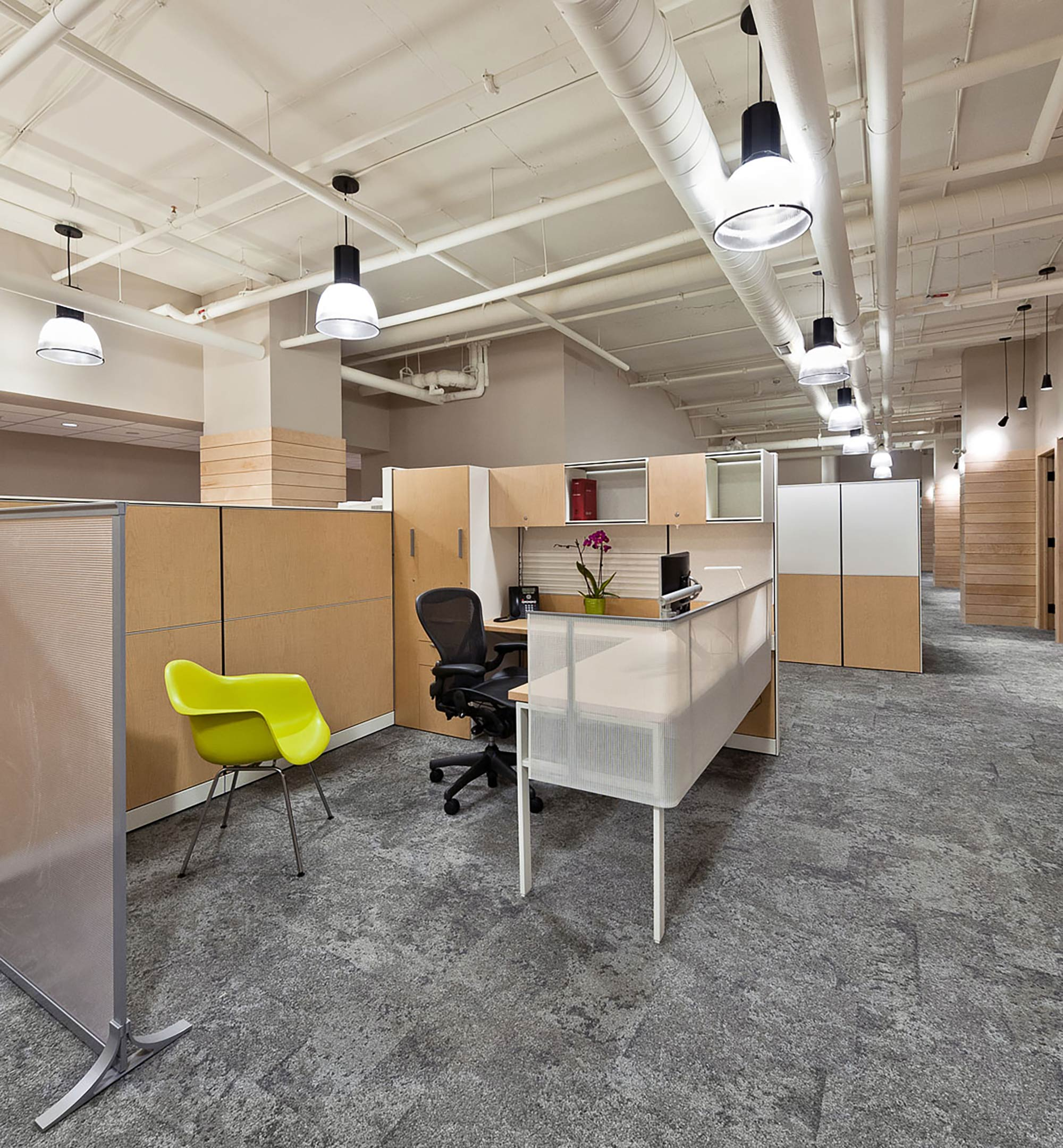 interior-design-legal-office-halifax-cubicles.jpg