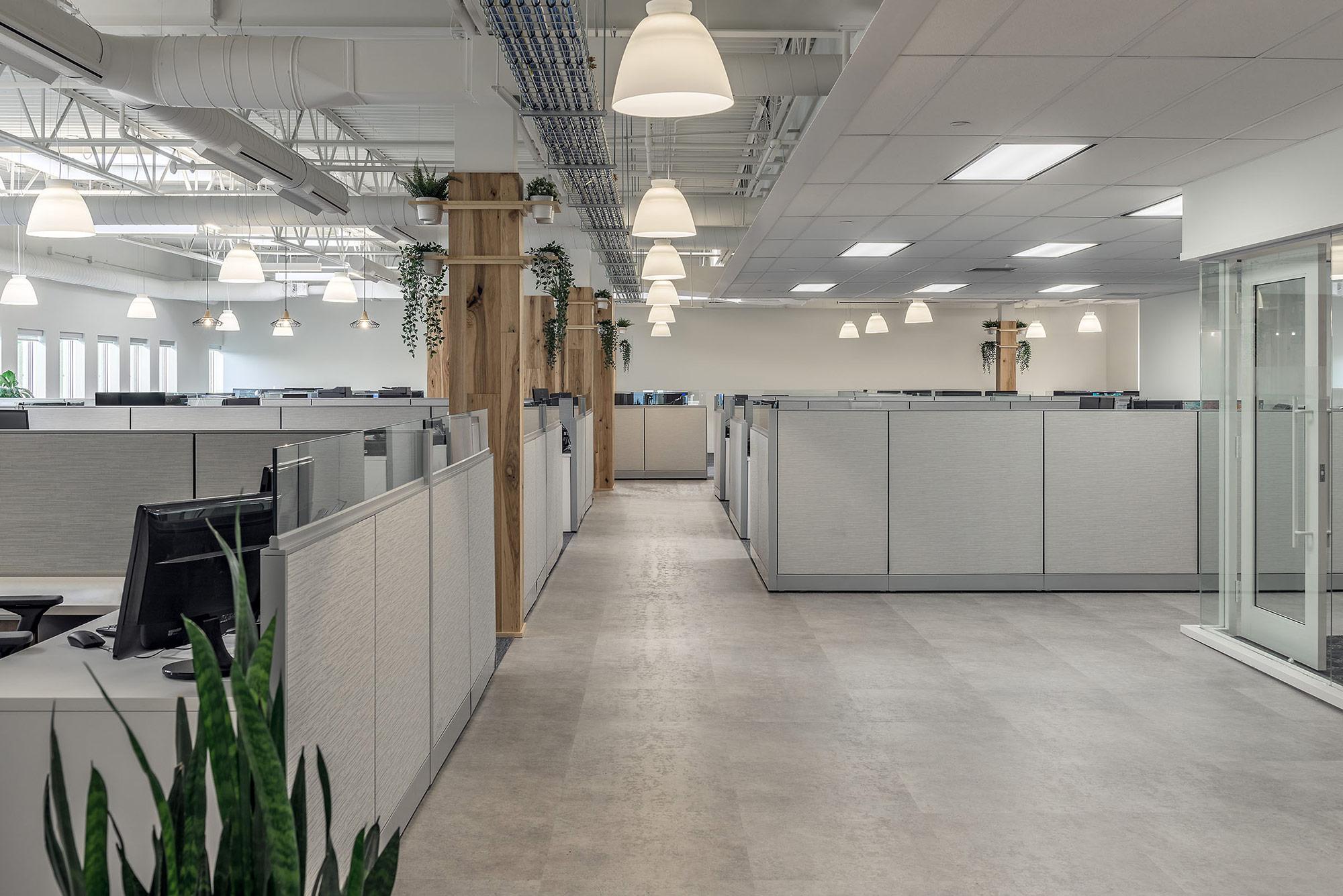 halifax-interior-design-financial-office-workspace-plants.jpg
