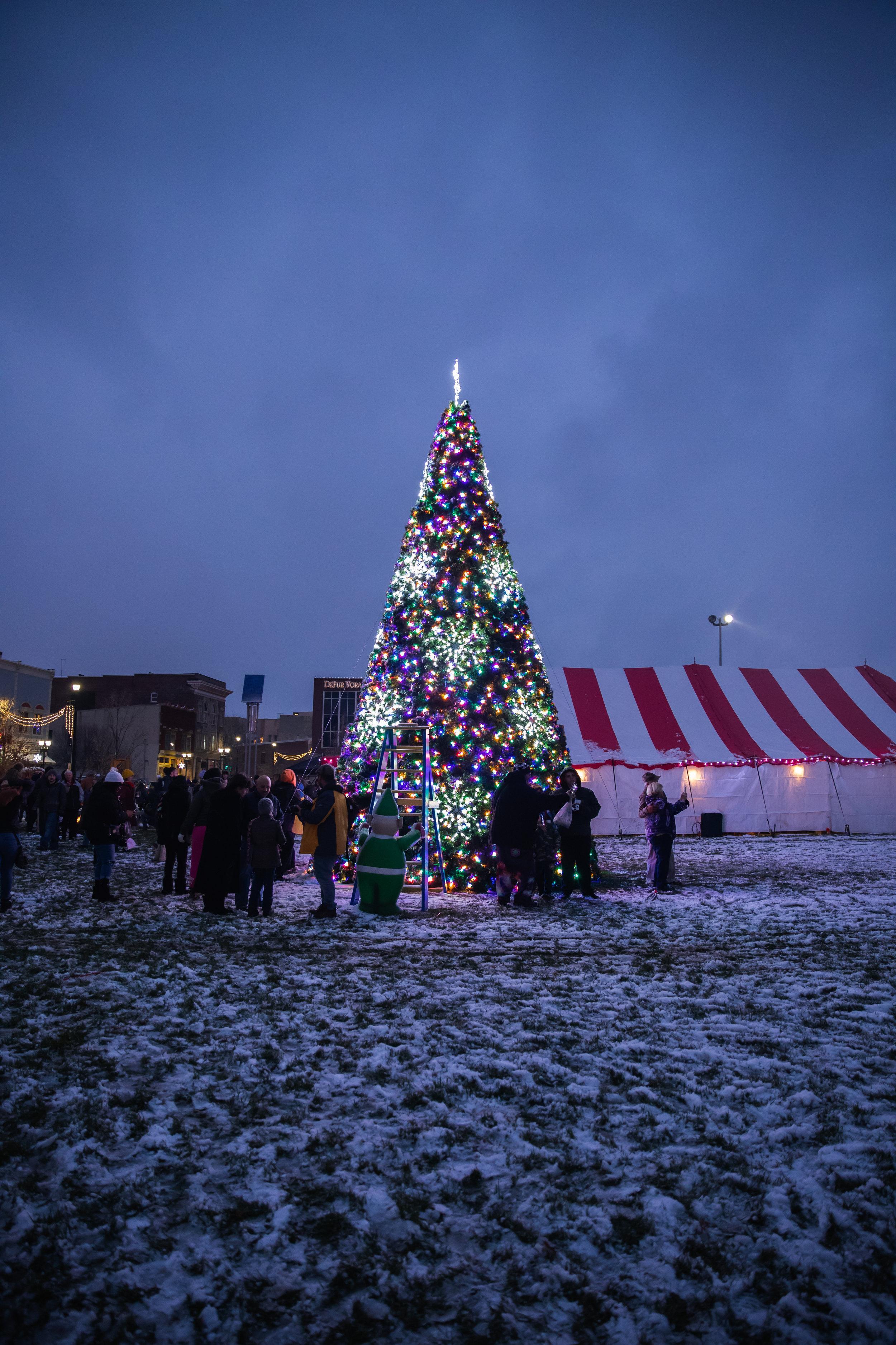 DWNTWN_Christmas Tree Shoot-69.jpg