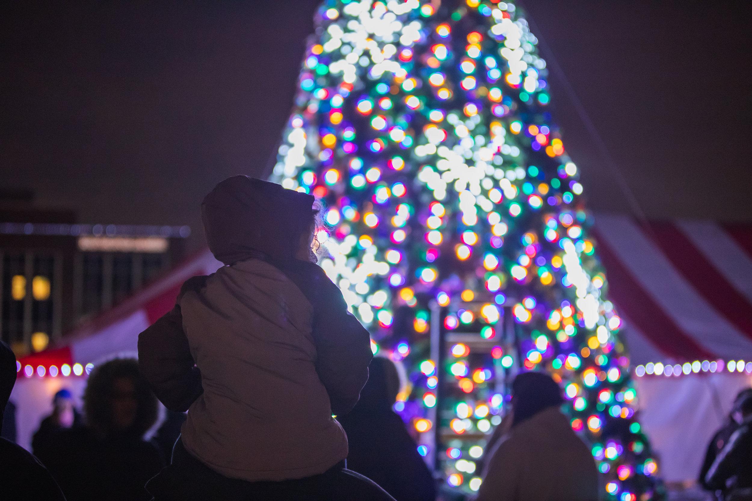DWNTWN_Christmas Tree Shoot-128.jpg
