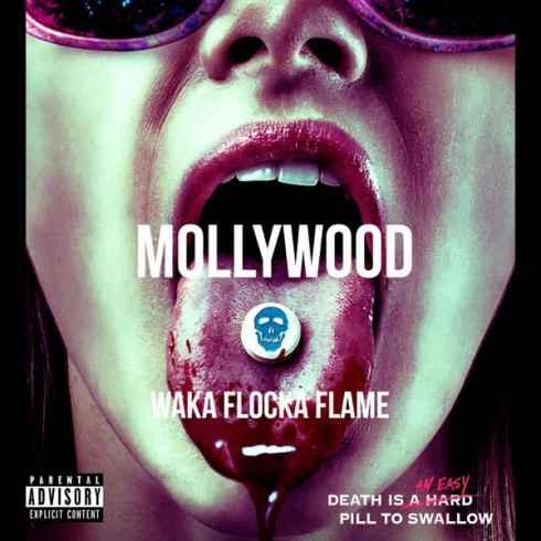 """Waka Flocka Flame """"Mollywood"""""""