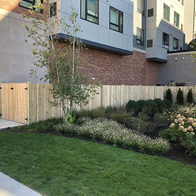 #cedar#fence#imperialfenceinc#fencebuilding#fencedesign