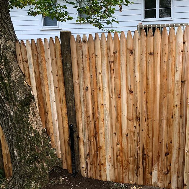 #cedarfence#fencedesign#fence #imperialfenceinc #tree #noproblem