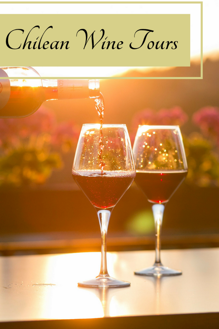 Chilean Wine Tours - Get your complete guide on wine tours in Chile. Find out the best wineries to visit and when to visit.