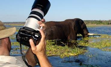 Chobe-photographic-Tour-370x225.jpg