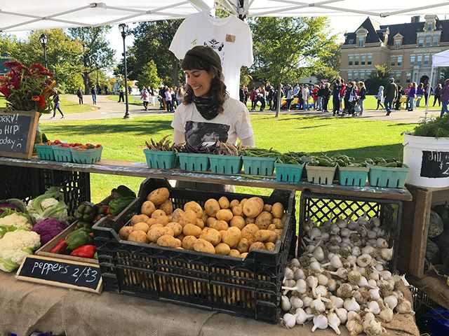 Come say hi at the last @pittsfieldfarmersmarket outdoor market of the season tomorrow from 9-1pm. We'll be back on November 9th indoors next door @commonroompfld. . . . Stay tuned with updates about additional winter markets and don't forget to sign up for our winter Csa. Link in bio. 🥕🥬🥔 . . #wintercsa #draftpower #organicfarming #regenerativeagriculture #berkshires #hudsonvalley