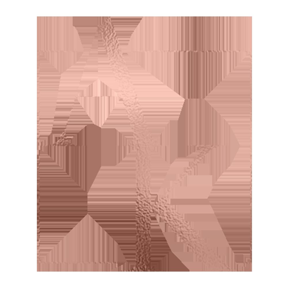 AK Virtual Assistance - Submark.png