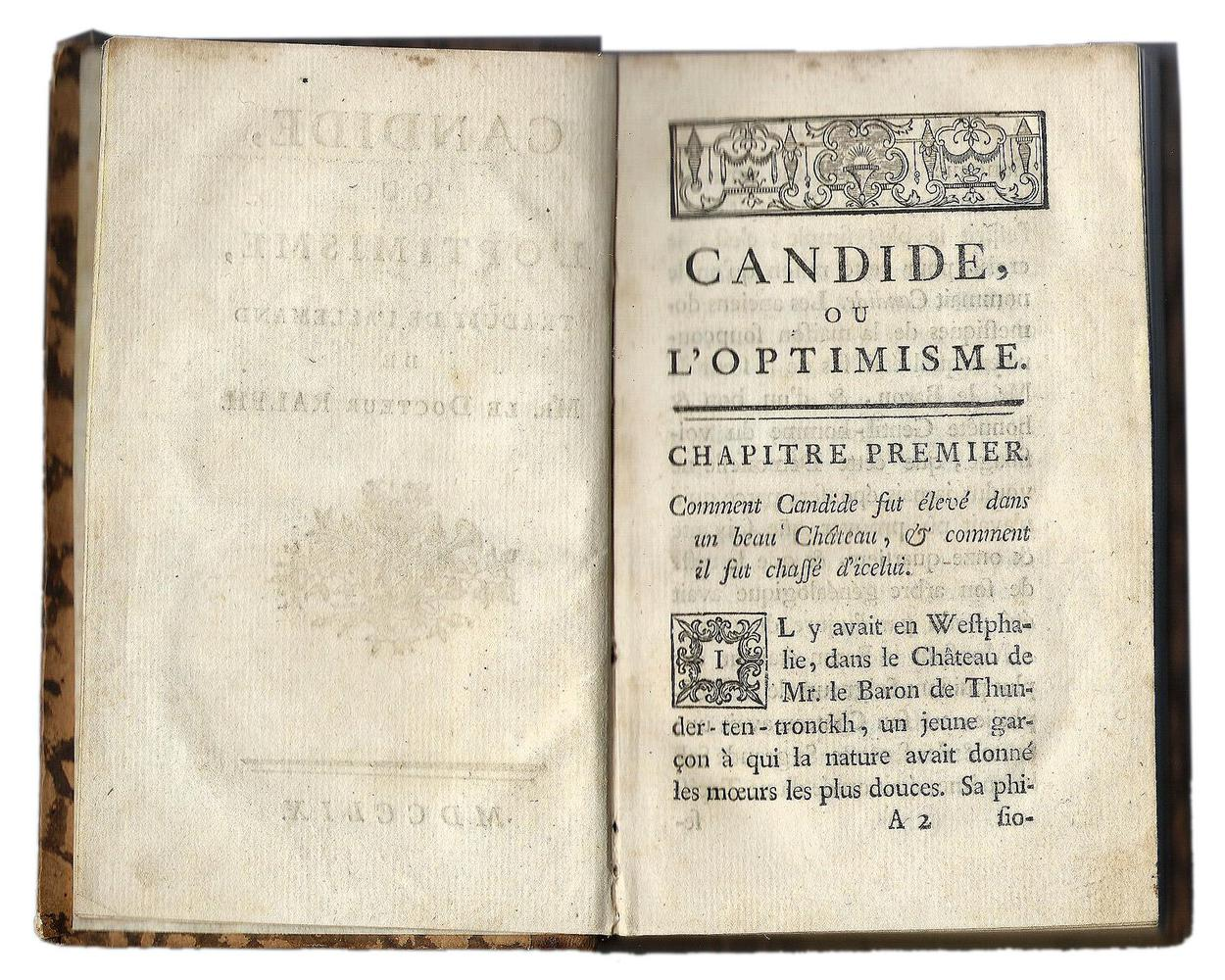 Voltaire 2.jpg