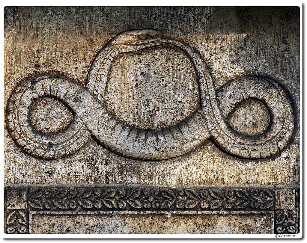 - Friedrich August Kekulé divined the molecular shape of the double-carbon benzene ring from a REM sleep inspired image of a serpent swallowing its tail.