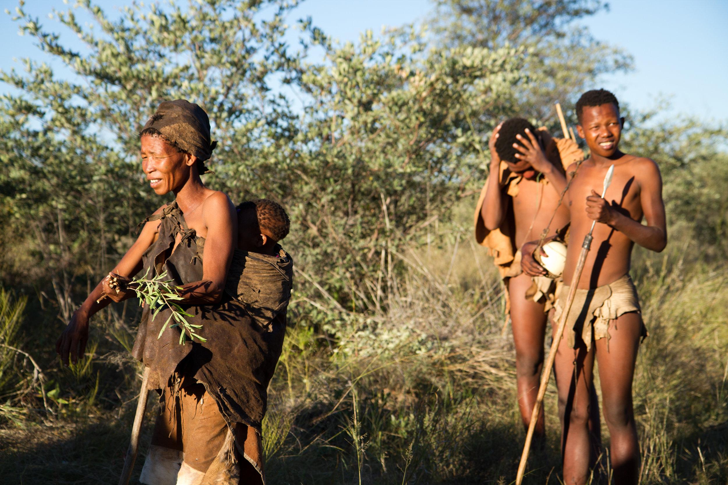 GHANZI, BOTSWANA - MAY 14:  San bushman show people how they gather food in the Kalahari desert in botswana may 14, 2017 in Ghanzi, Botswana - Image
