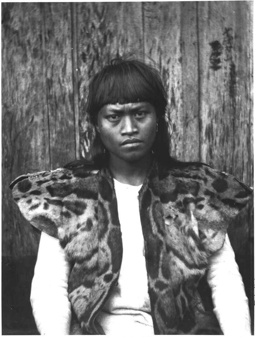 PICTURED:  Indigenous man wearing a clouded-leopard vest. From digital archive of the  University of Tokyo  Circa 1900.