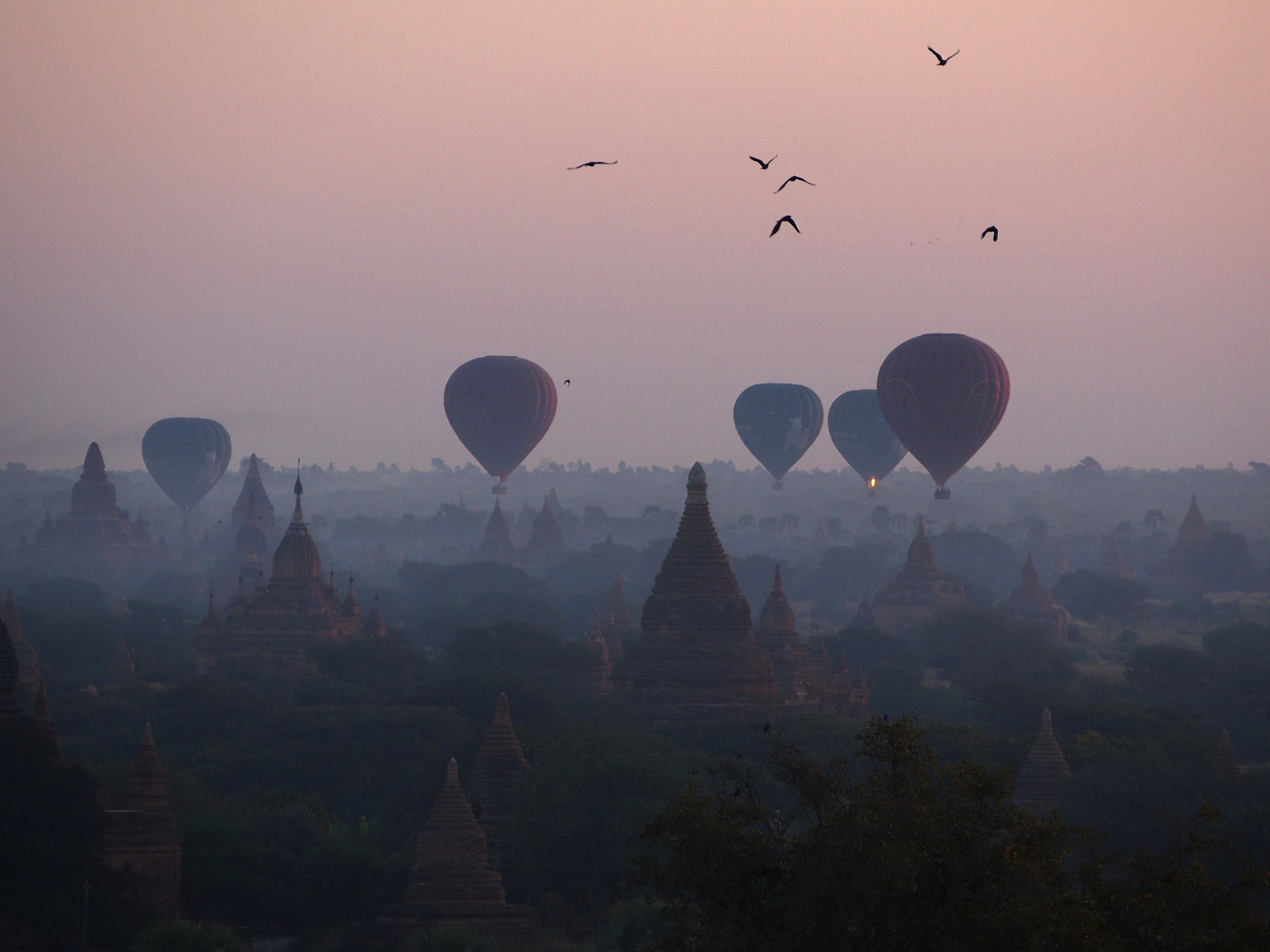 PICTURED:  Sunrise over the archaeological site of Bagan with all its balloons.  Photo Credit    Rheins   ,    CC License