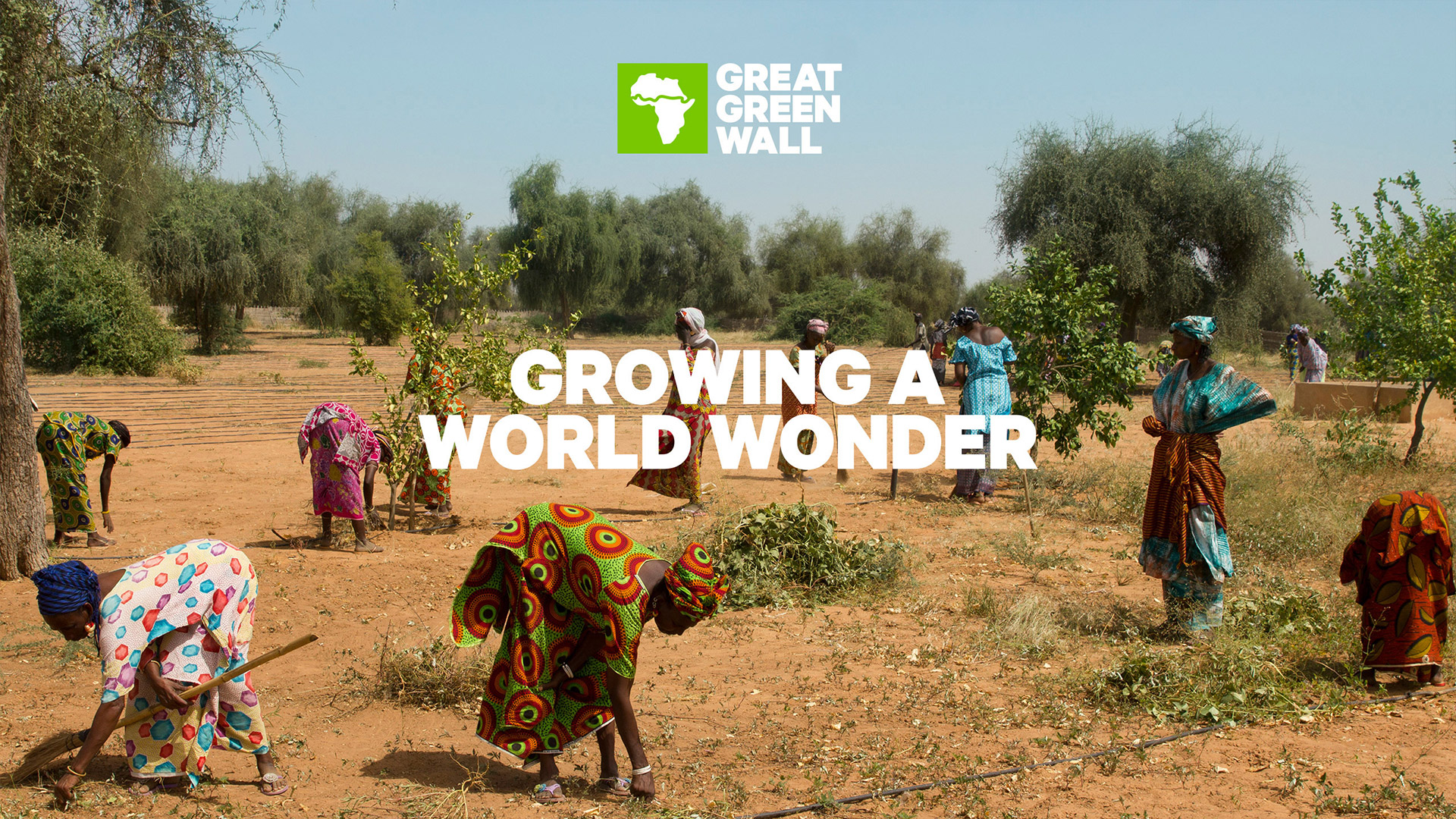 Photo credit: Greatgreenwall.org
