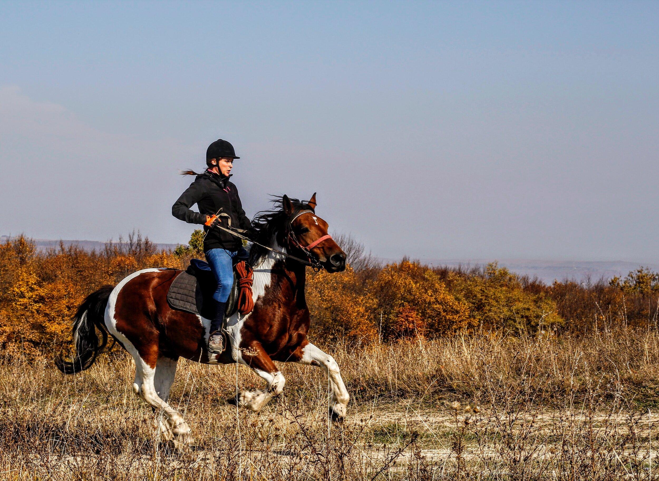 Photo by  Sergiu Vălenaș .
