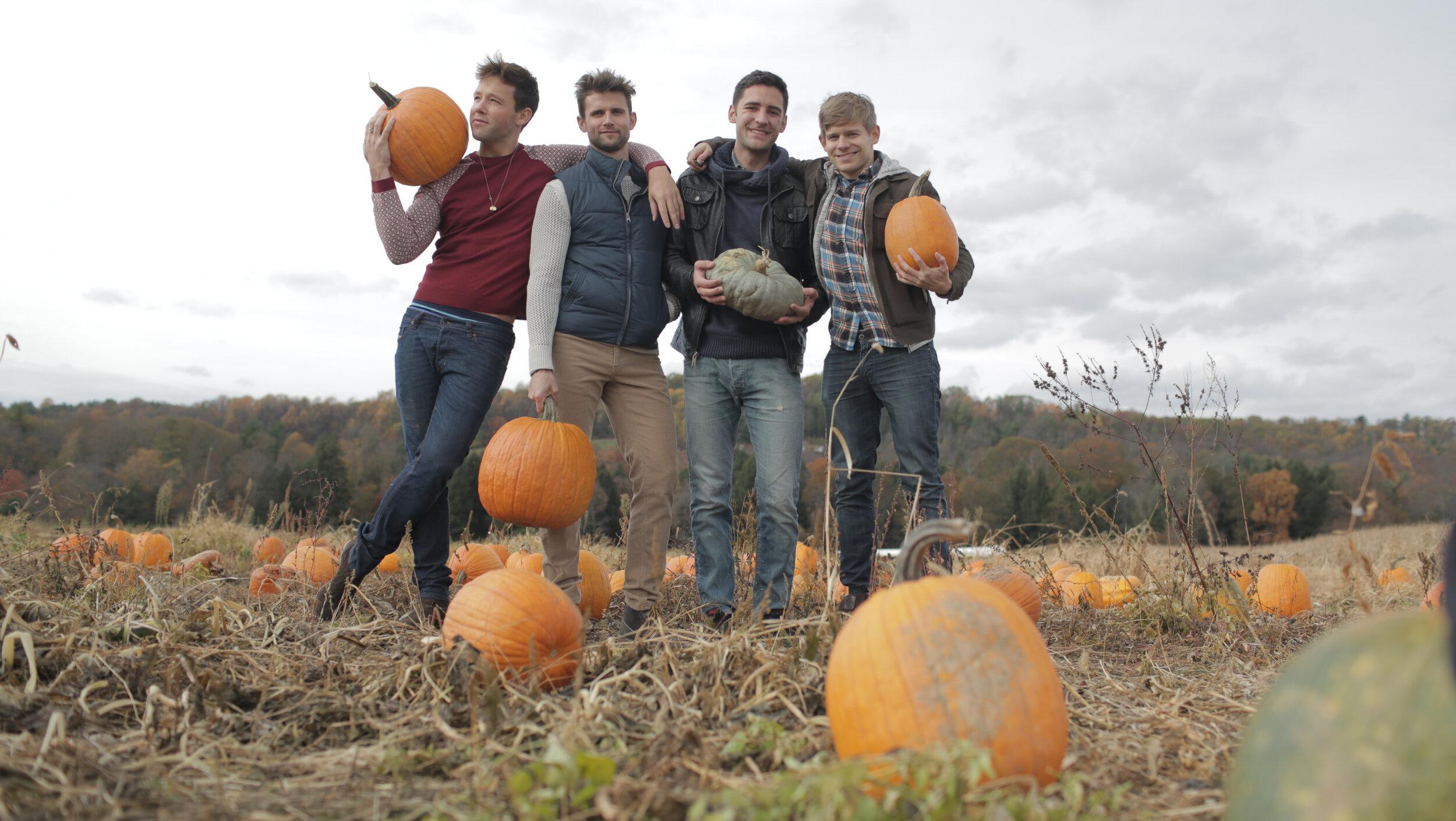 pumpkinsbefore.jpg