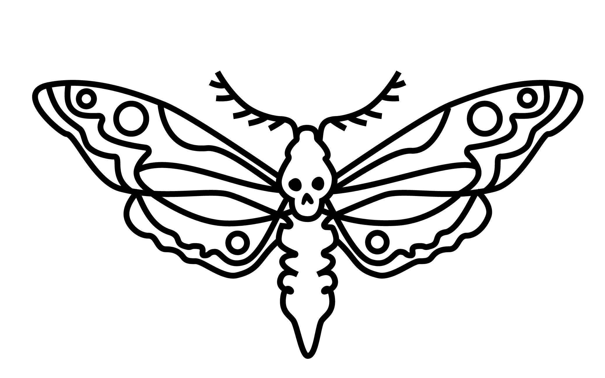 moth_logo_.png