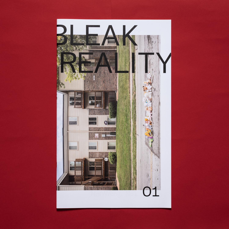 A Bleak Reality (link)