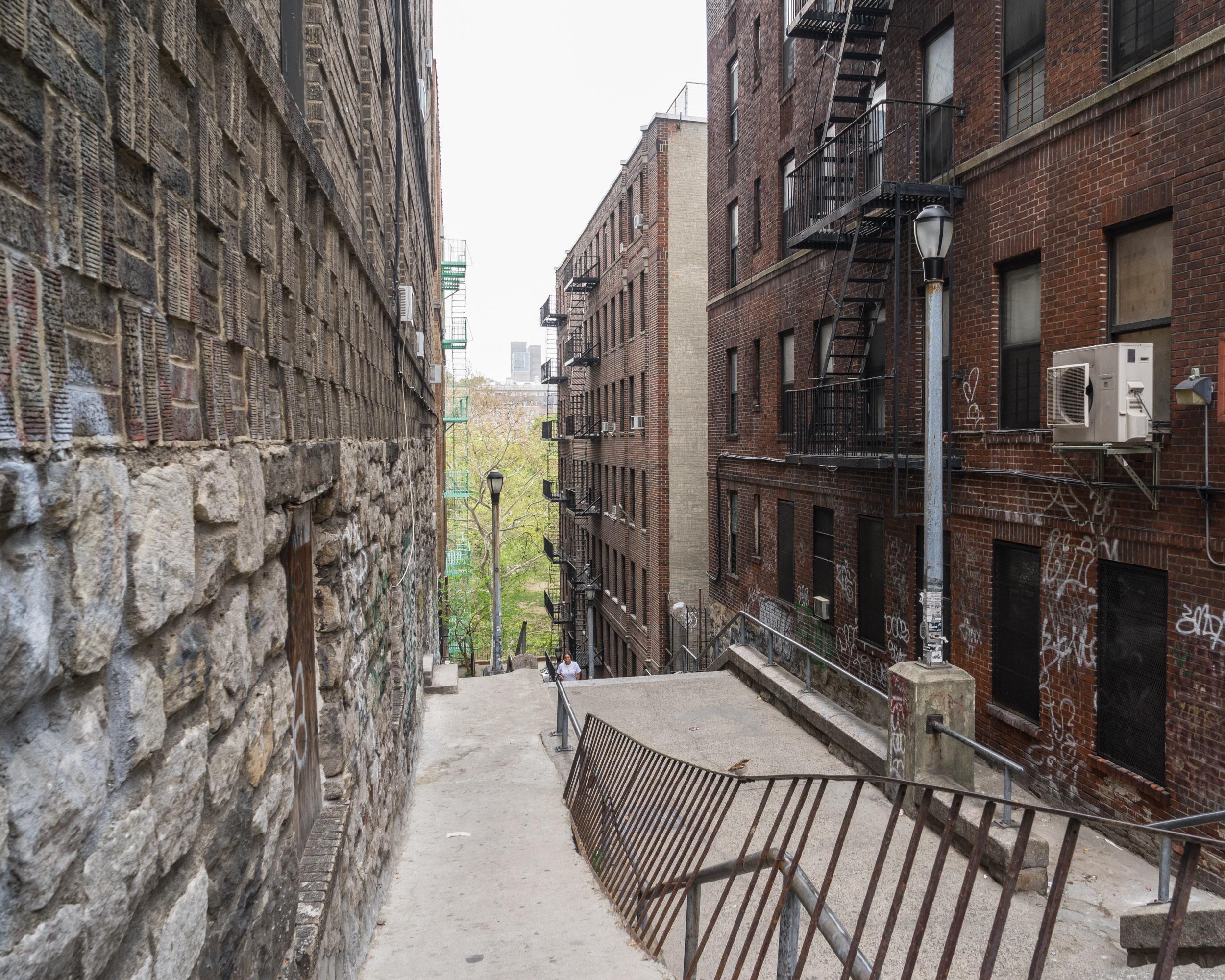 Bronx_kg025.jpg