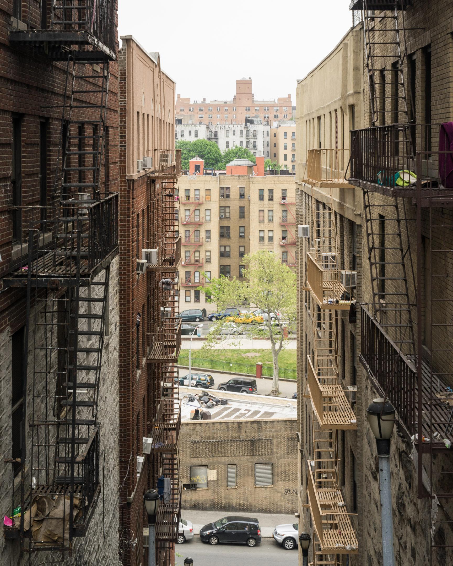 Bronx_kg028.jpg
