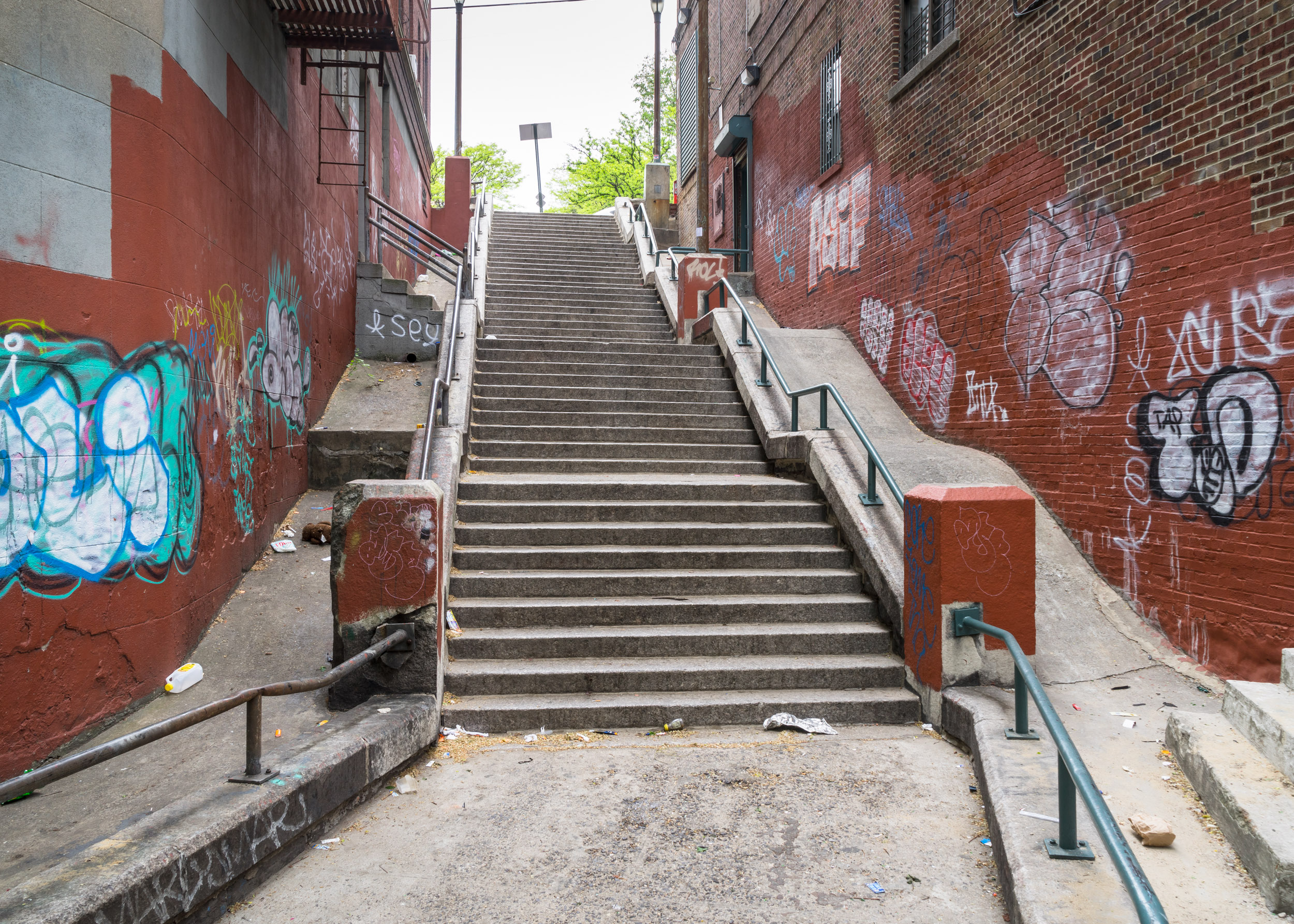Bronx_kg033.jpg