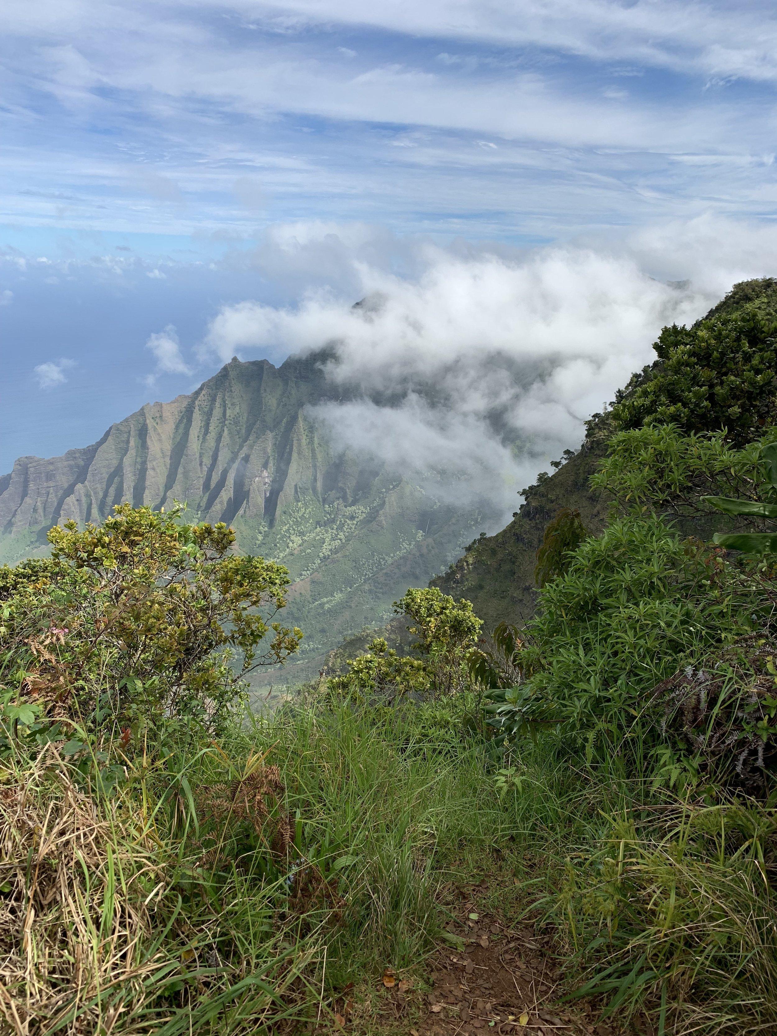 Enjoying some Hawaiian humidity!
