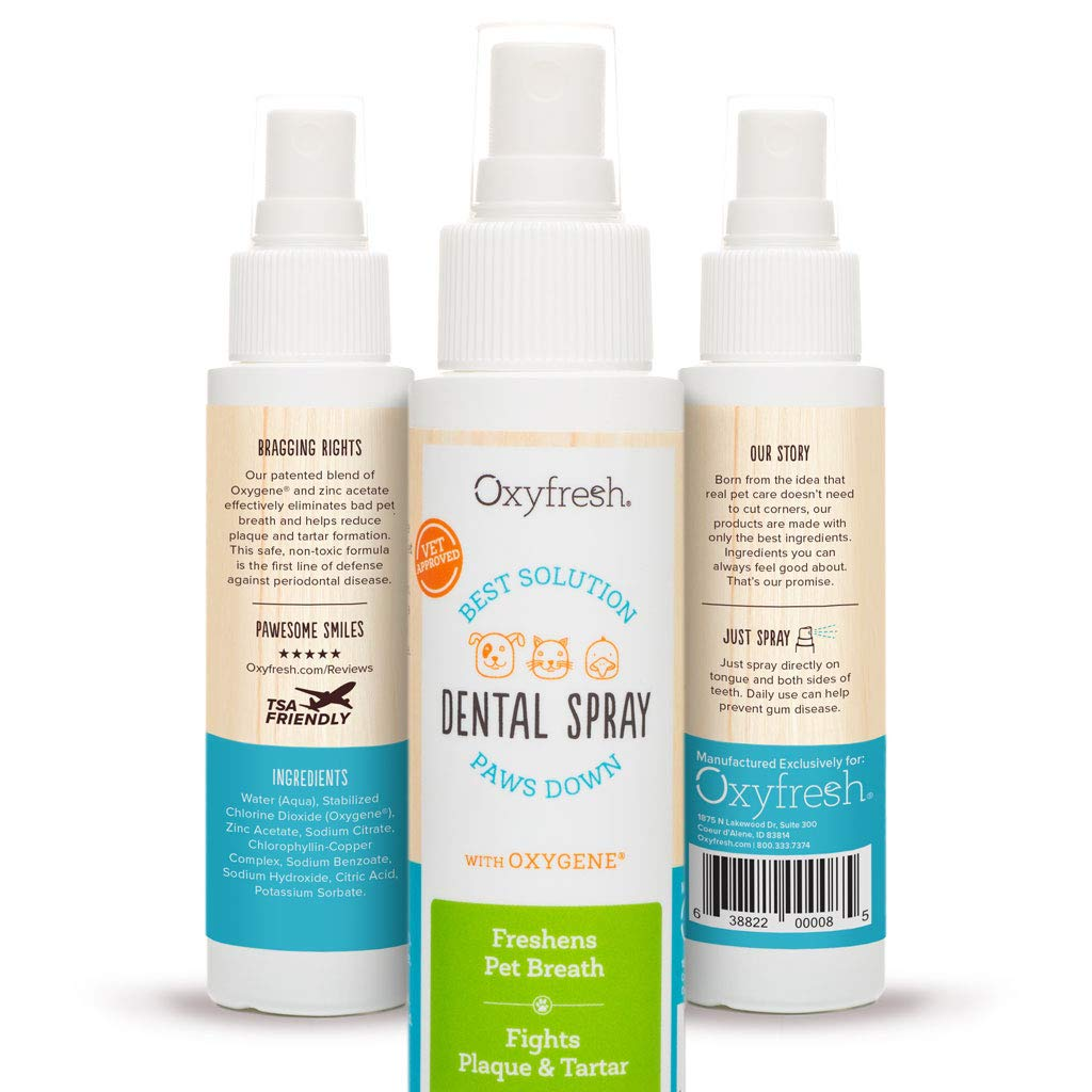 Dental Spray.jpg