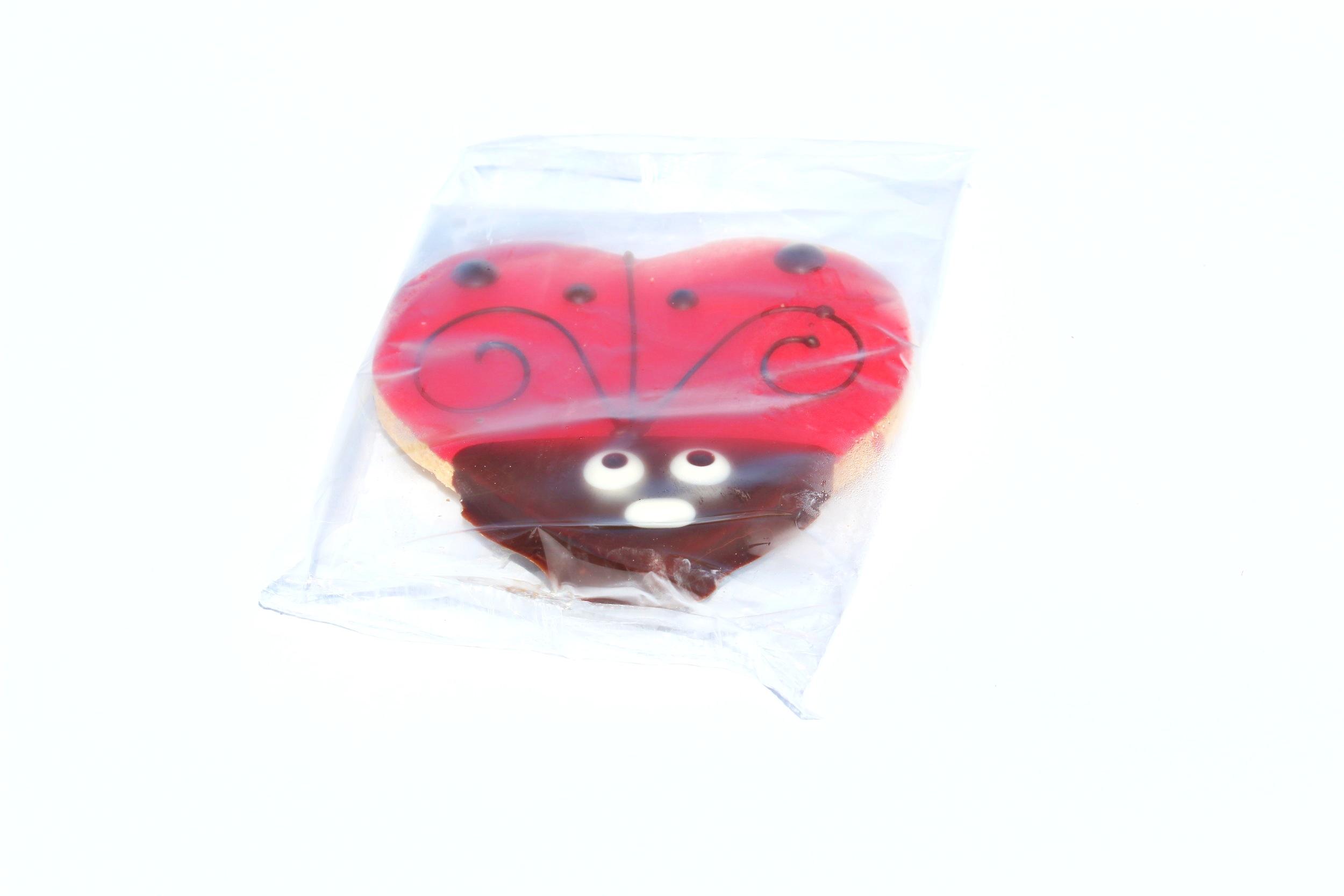 Wrapped Ladybugs