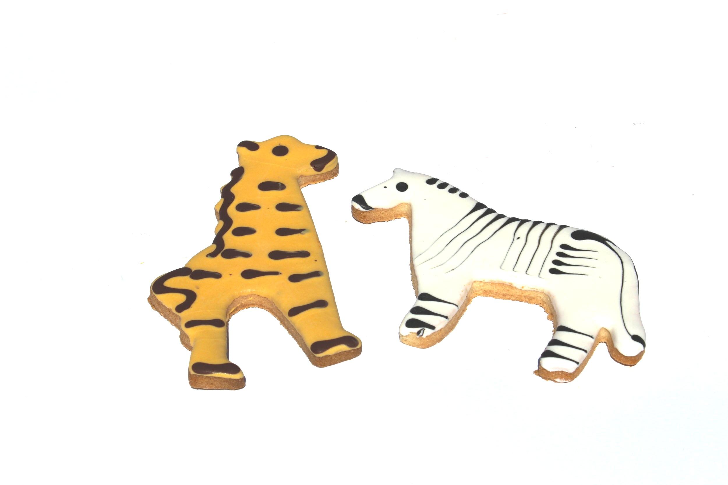 Zebra and Giraffes
